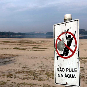 World Water Day: Deadly plight of Brazil's river defenders goes unheard