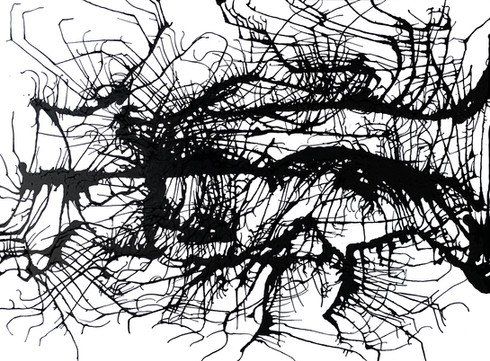 CONNECTED WITH POLLOCK 2