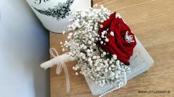 Red rose flower girl flowers
