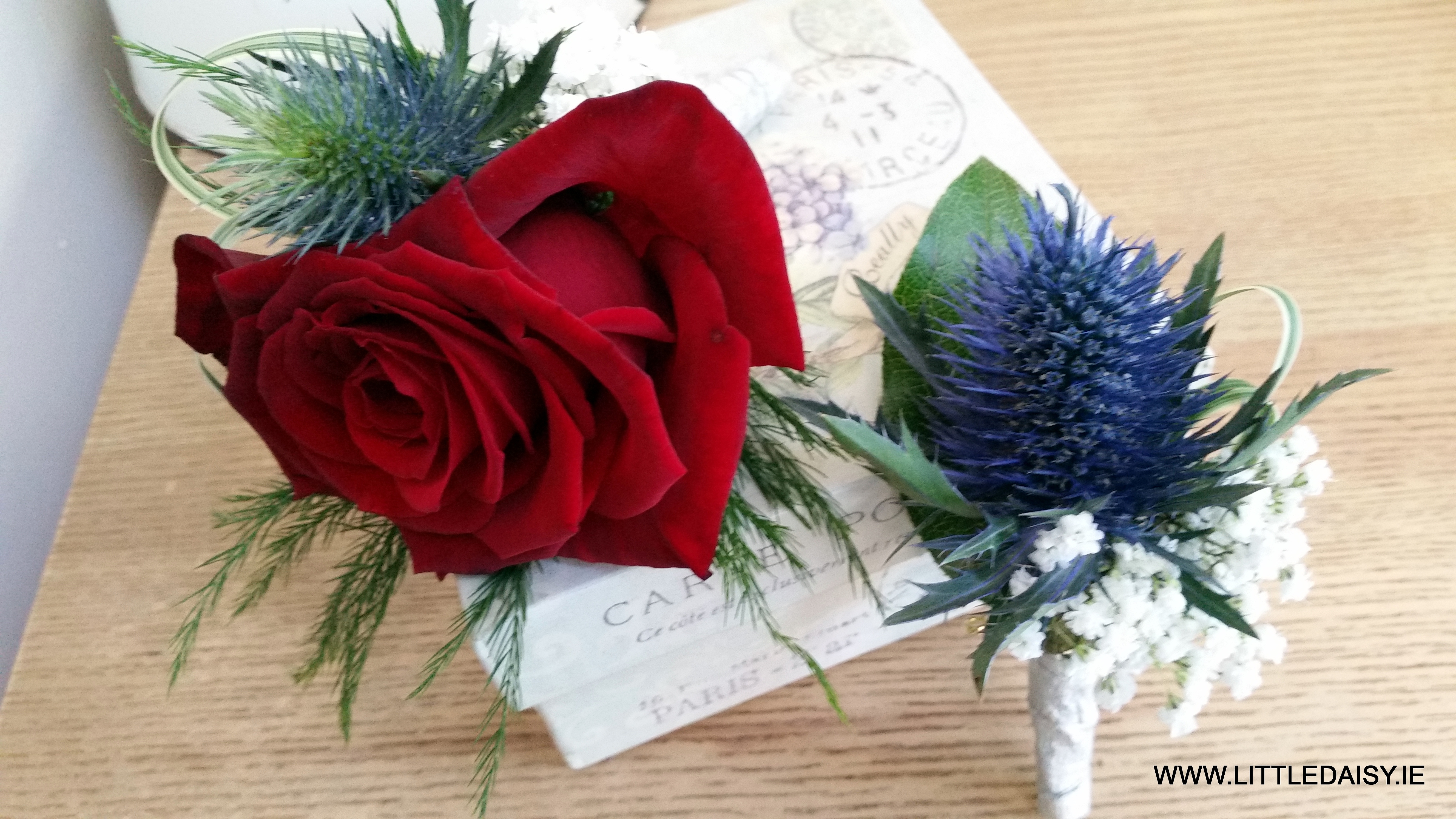 Red rose and blue thistle