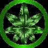 ECS_ 180 size icon.png