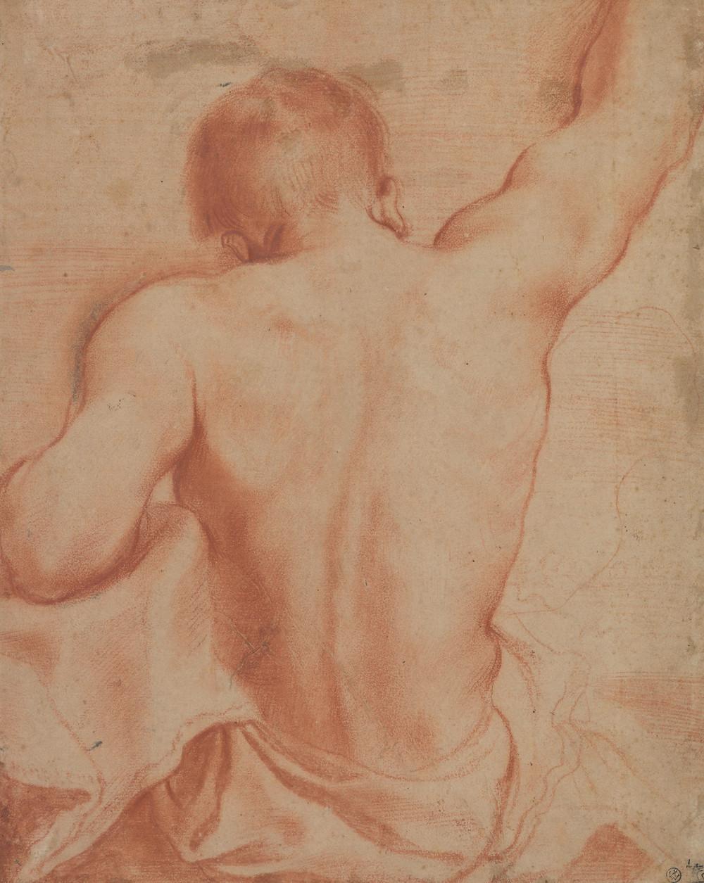 Giovanni Francesco Barbieri, dit Guercino (Cento 1591 – 1666 Bologne), Étude du dos d'un homme assis, vers 1619