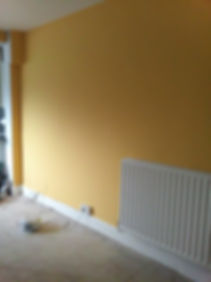 improvements by belper painter