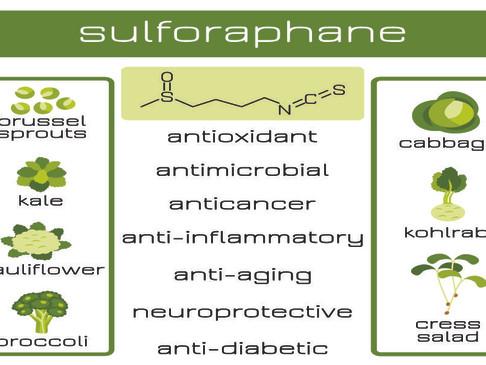 Sulforaphane - Antioxidant , Anti-Cancer, Anti-Diabetic, Neuroprotective, Anti-Aging and more.
