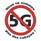 Logo5Gpetit.jpg