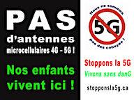 PasdAntennes Petit.jpg