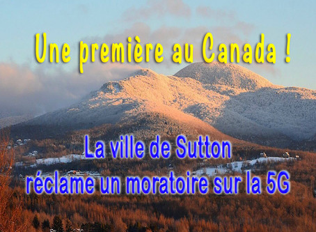 Première résolution au Canada réclamant un moratoire sur la 5G