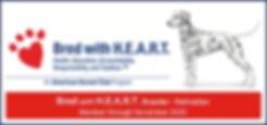 2019_DAL_BWH_banner.jpg