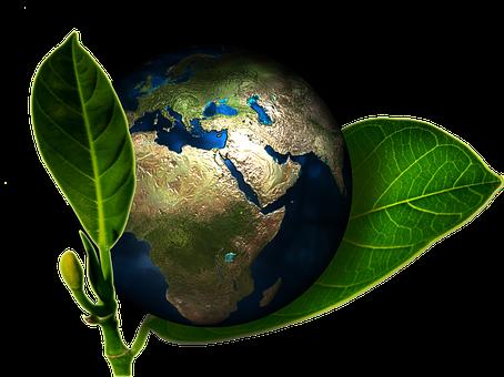 Willkommen umweltbewusste Umweltsünder: Ein Weckruf für Angesprochene... und mich!