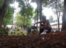Captura_de_Tela_2019-10-21_às_12.00.52.p