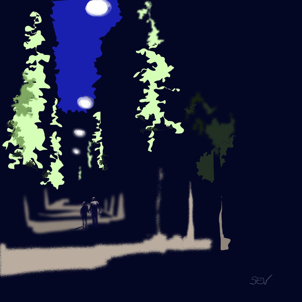 Nuit d'été , avenue de Paris