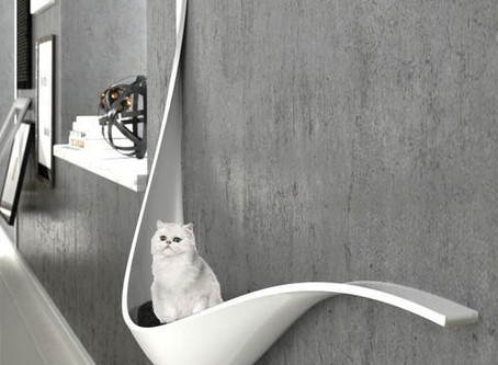 Interior solutions for pets