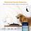 Thumbnail: DAHUA IMOU (A22EP) RANGER 2 (FREE ADATA MicroSD Endurance 32GB)