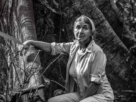 La defensora de la selva