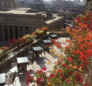 Carlton rooftop. Best Rooftop Bars in Cairo
