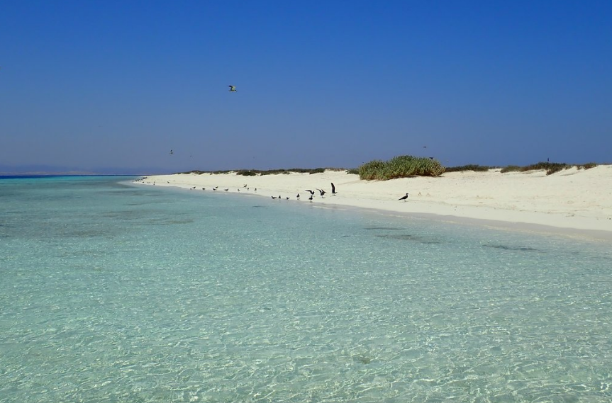 Qulaan Islands. Best beaches in Egypt