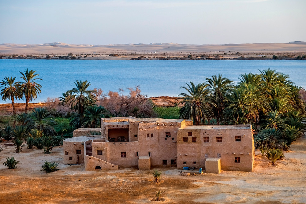 Siwa oasis, egypt. best new year's spots in Egypt