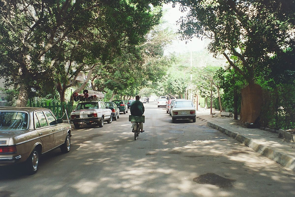 Maadi, a green neighborhood in Cairo, Egypt. Full of expats