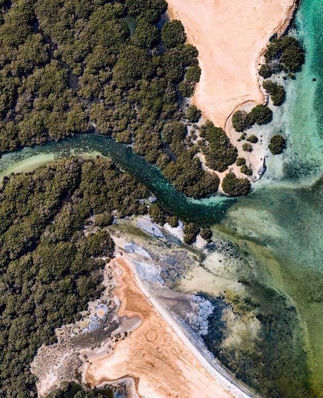 Abu Minqar Island. 7 Tropical Islands You Won't Believe Are In Egypt