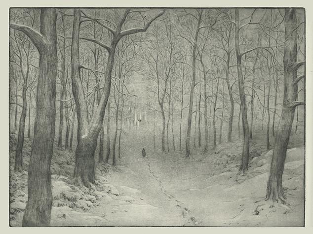 Krähe - Winterreise
