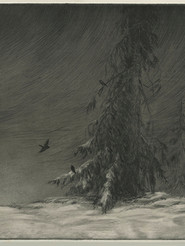 Inken Stabell - Birds In Winter