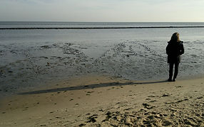 Sylt (3)bearbsign800.jpg