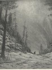 Winterreise: Irrlicht