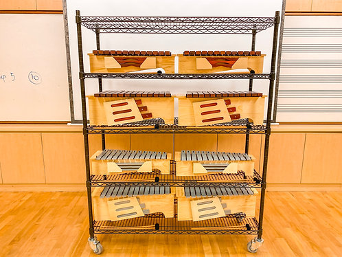 Custom 5 Level Multi-Purpose Rack W/ Wheels