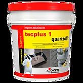 (Q) TECPLUS1.png