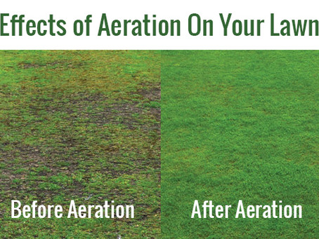 Now is the time....Core aerate your lawn!
