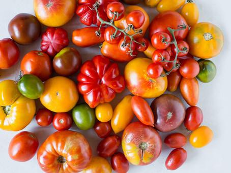 Tomato Sauce (PART 3)