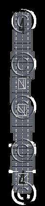 CV-4 Ranger MS blue deck nvw