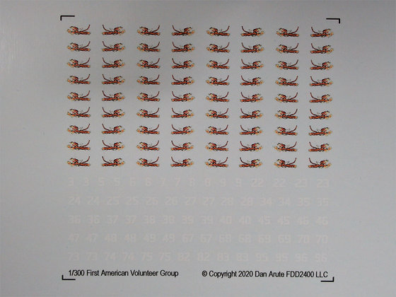 1-300   1st American Volunteer Squadron - Flying Tigers