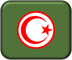 1-300 Tunisian air force roundels