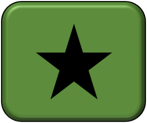 USA Star - Black - Small
