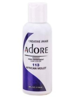 Adore African Violet #113