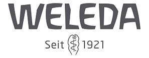 Wleda logo 1.png