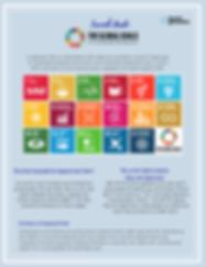 LG FINAL Condensed Global Goals.png