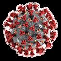 Coronavirus-CDC-645x645_edited_edited.pn