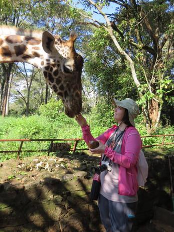 Giraffe Sanctuary Visit