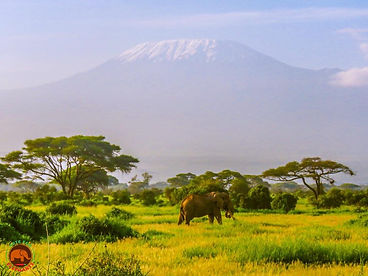 Kilimanjaro and Craig.jpg