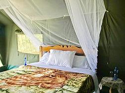 Fisi Camp 1.jpg