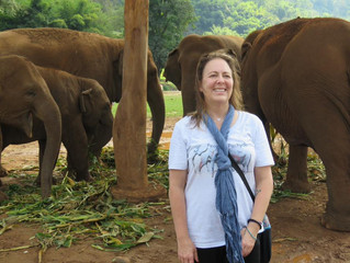 """Crazy Elephant Ladies"" Lead the Charge to Save Endangered Elephants"