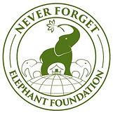 NFEF-Logo-Green-2-PNG (1).JPG