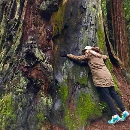 Get out and hug some trees (me in Humboldt)