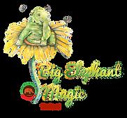 BEM Logo with AFE FINAL.png