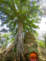 Angkor Wat 2 BEM C.jpg