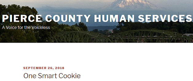 Screenshot_2018-10-11 One Smart Cookie_e