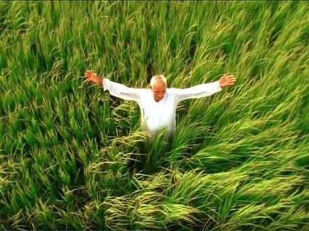 TILDA FARMERS.jpg