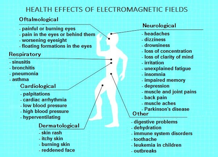 The effects of electromagnetic fields.jp